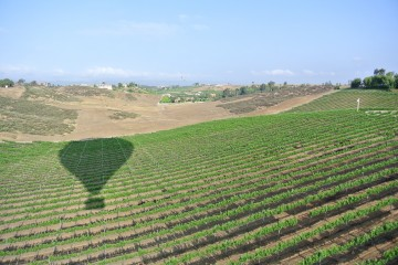 Hot Air Balloon Adventure with A Grape Escape floating over Temecula Valley.