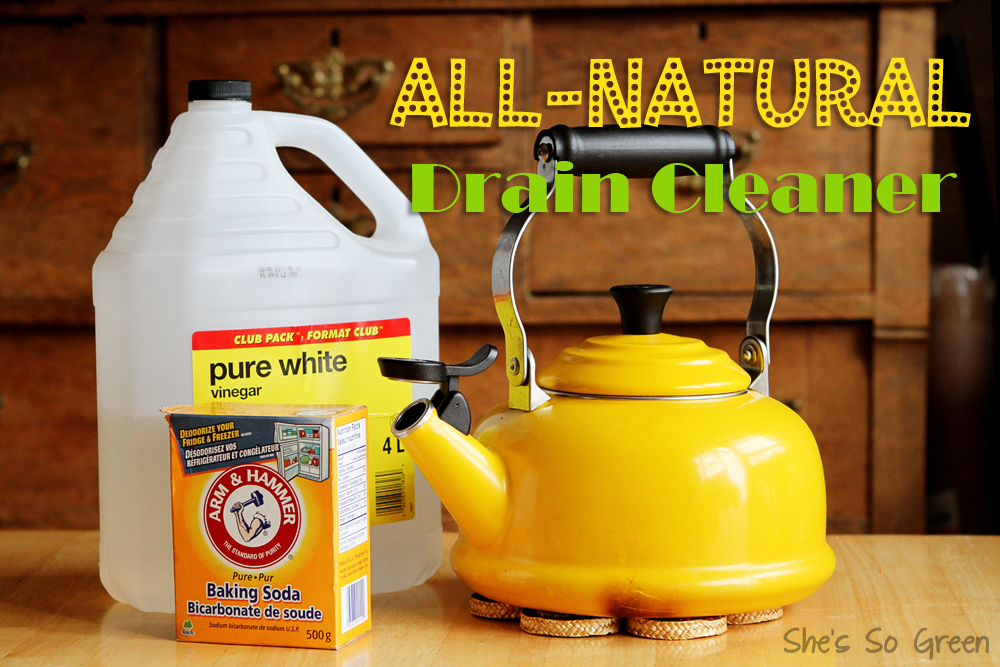 All-Natural Drain Cleaner