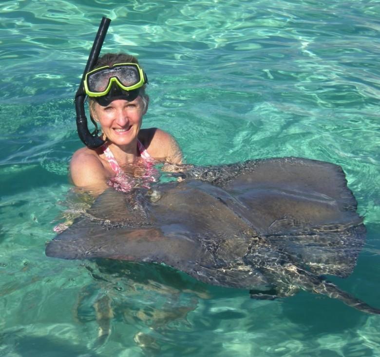 snorkel and stingray
