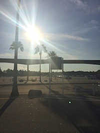 Nearly empty parking lot at Walt Disney World's Epcot an hour before gates opened.