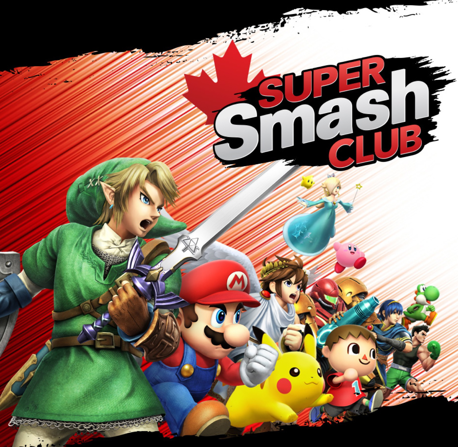 Calling All Nintendo Super Smash Bros. Fans!