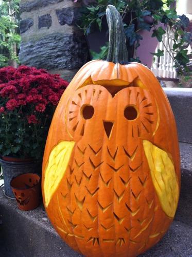 brett_bara_owl_pumpkin