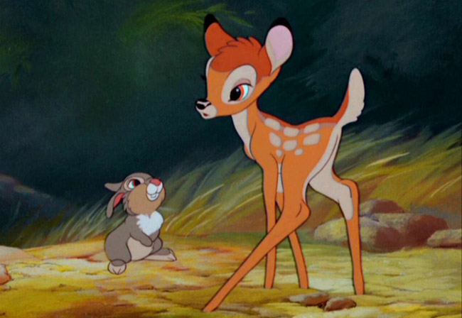 Bambi-bambi-5777872-1280-960