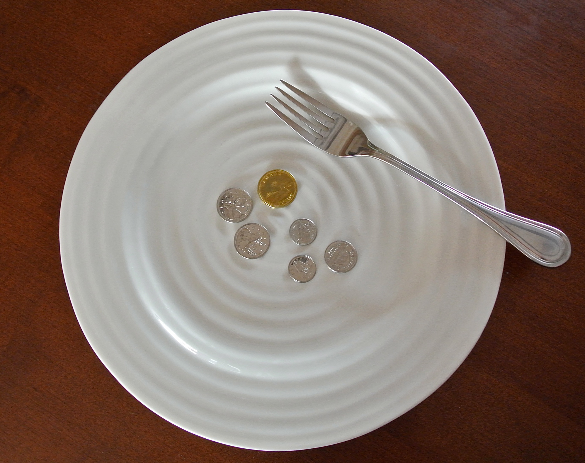The Challenge: Can You Live On $1.75 A Day?
