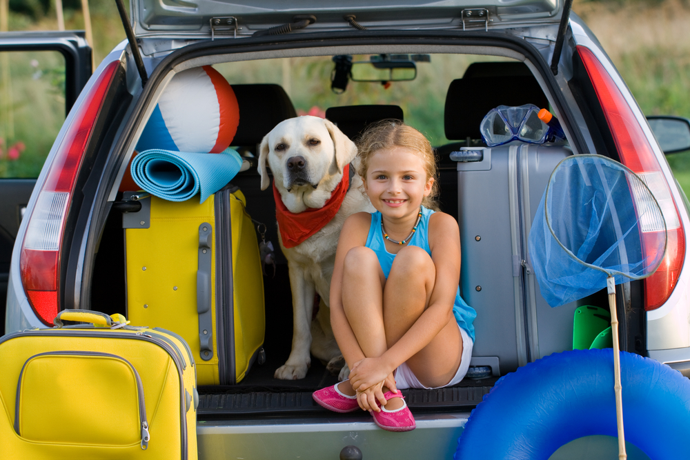 Road Trip! How To Bring Your Family Pet Along For The Ride