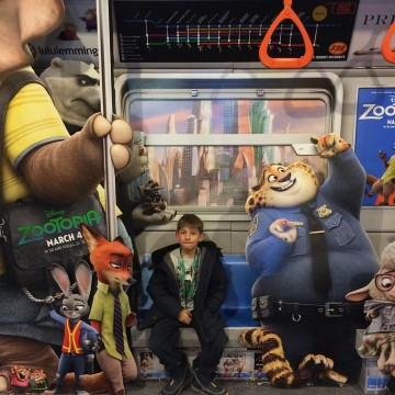 Counting down to Zootopia