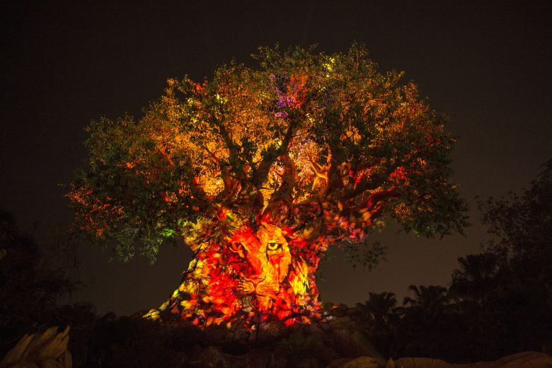 "Disney's Animal Kingdom's iconic Tree of Life will undergo extraordinary ""awakenings"" throughout each evening as the animal spirits are brought to life by magical fireflies that reveal colorful stories of wonder and enchantment. Projections of nature scenes take on a magical quality as they appear to dramatically emanate from within the Tree of Life. (David Roark, photographer)"