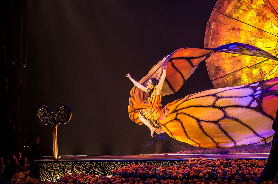 Unexpected Thrills in Cirque du Soleil's Luzia