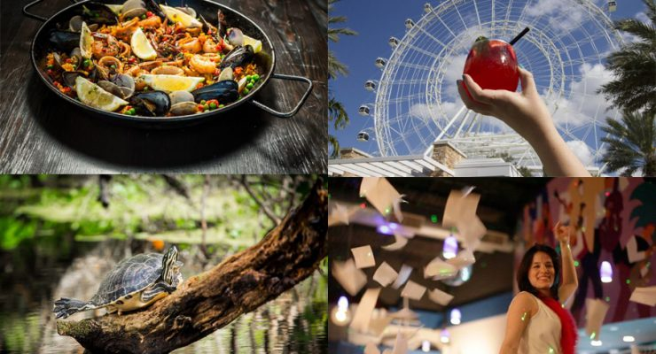 Orlando Like A Local: Your Guide To Hidden Gems